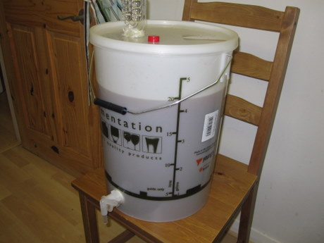 Fermenter with wort