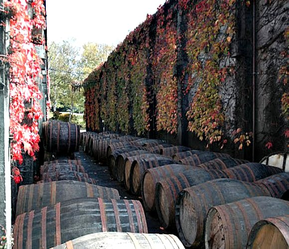 casks_outside Karuizawa